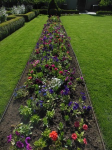 Flower bed at Temple Square