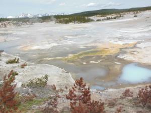Part of Norris Geyser Basin