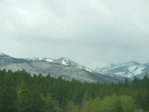 Going through the Bighorn Mountains