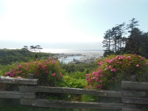 View from Kalaloch Lodge