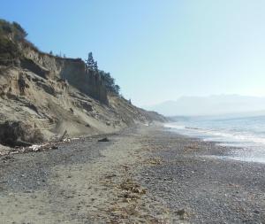 Beach at Dungeness Wildlife Refuge