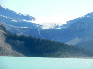 Bow glacier, falls, and lake