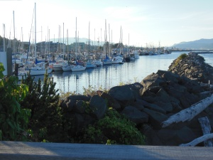 Marina in Campbell RIver