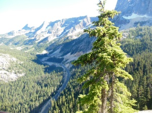 View from Washington pass scenic overlook on North Cascades scenic highway