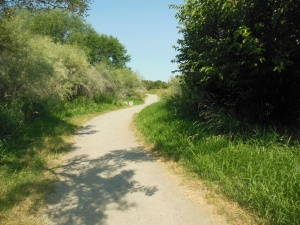 Trail through wildlife refuge
