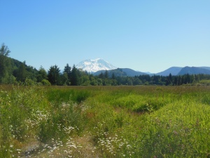 The long distance shot of Mt Ranier