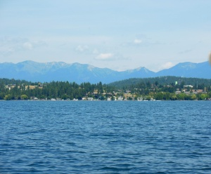 View from Flathead Lake