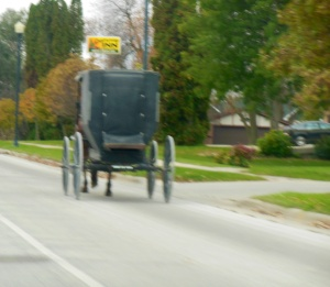 Horse and buggy in SE MN
