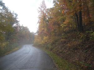 A rainy fall afternoon