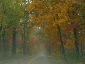 Driving through Pea Ridge National Battlefield