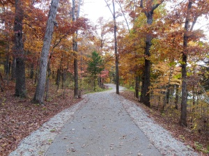 a smooth hiking trail by the lake