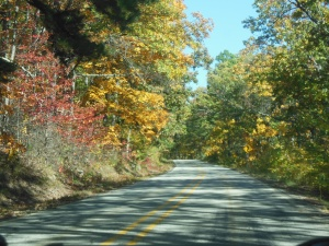 Along the Mt. Magazine Scenic Byway
