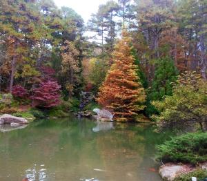 Garvan Garden