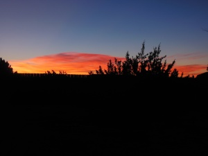 Sunrise at Jude's