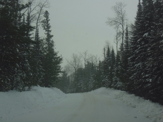 The road to our lodge