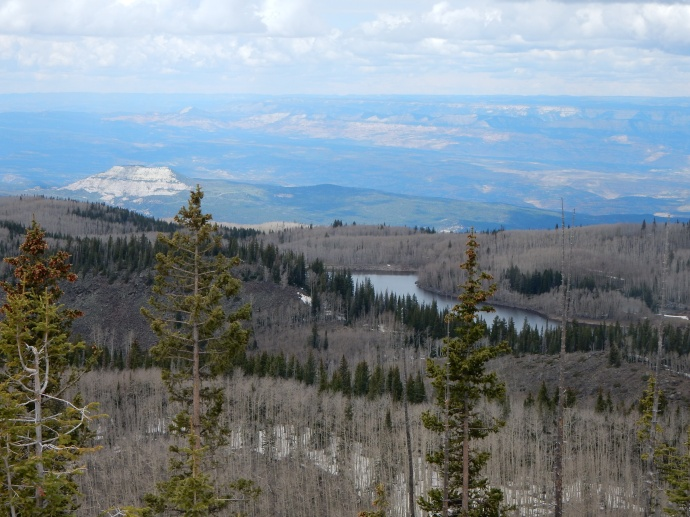 Along the Grand Mesa scenic byway
