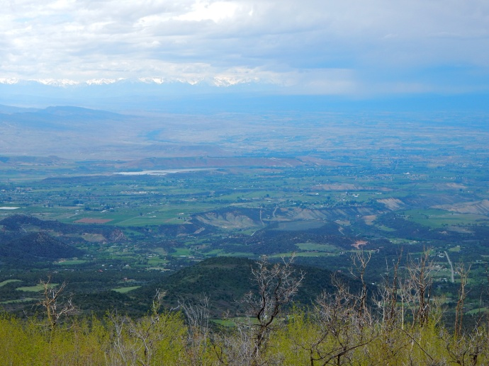 Looking down on Uncompahgre valley
