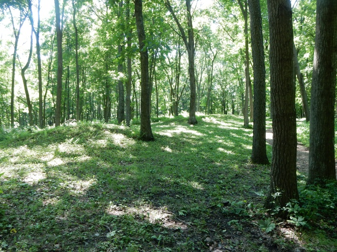 Two of the mounds in Effigy Mound National Monument, IA