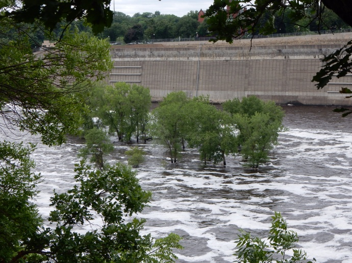 high water covers an island by the Ford dam in Mississippi RIver