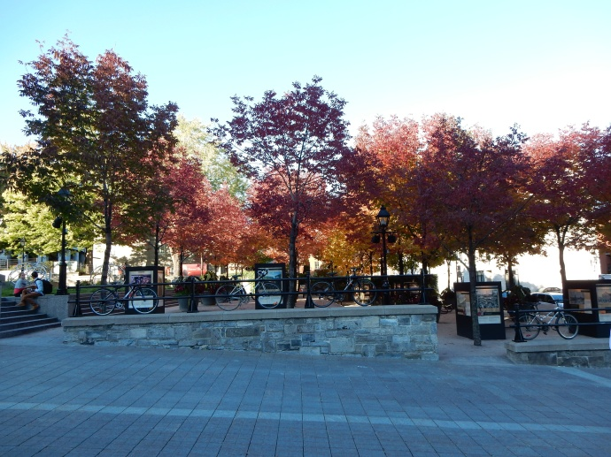Along  Jacques Cartier Place