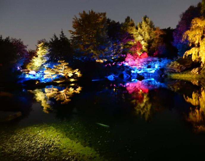 Japanese Garden at night at Montreal Botanical Gardens