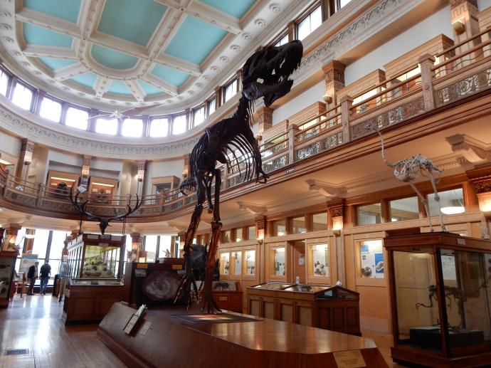 Redpath Museum