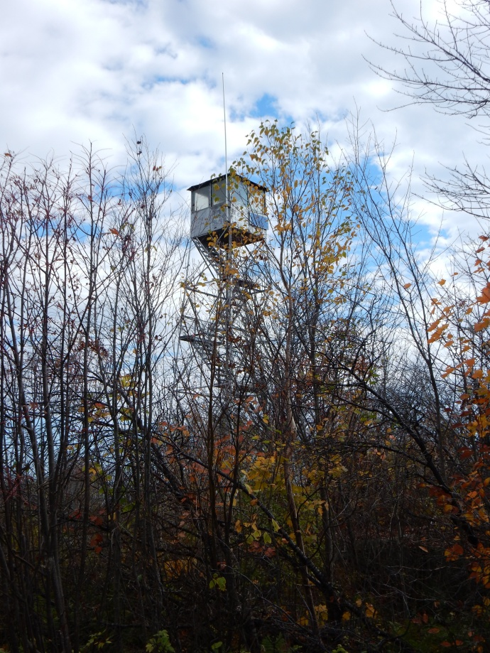Fire tower on Mt. Arab