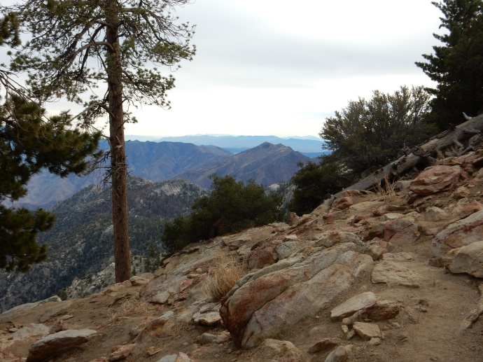 Hiking in San Jacinto State Park