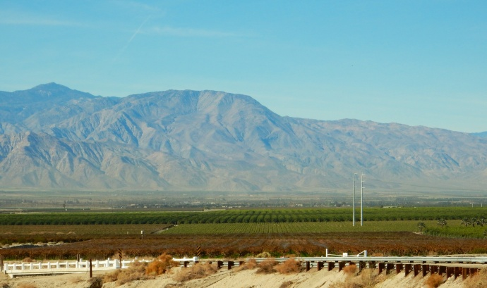 Imperial Valley agricultural view