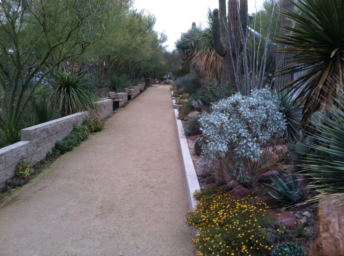 the gardens area of the Springs Preserve in Las Vegas
