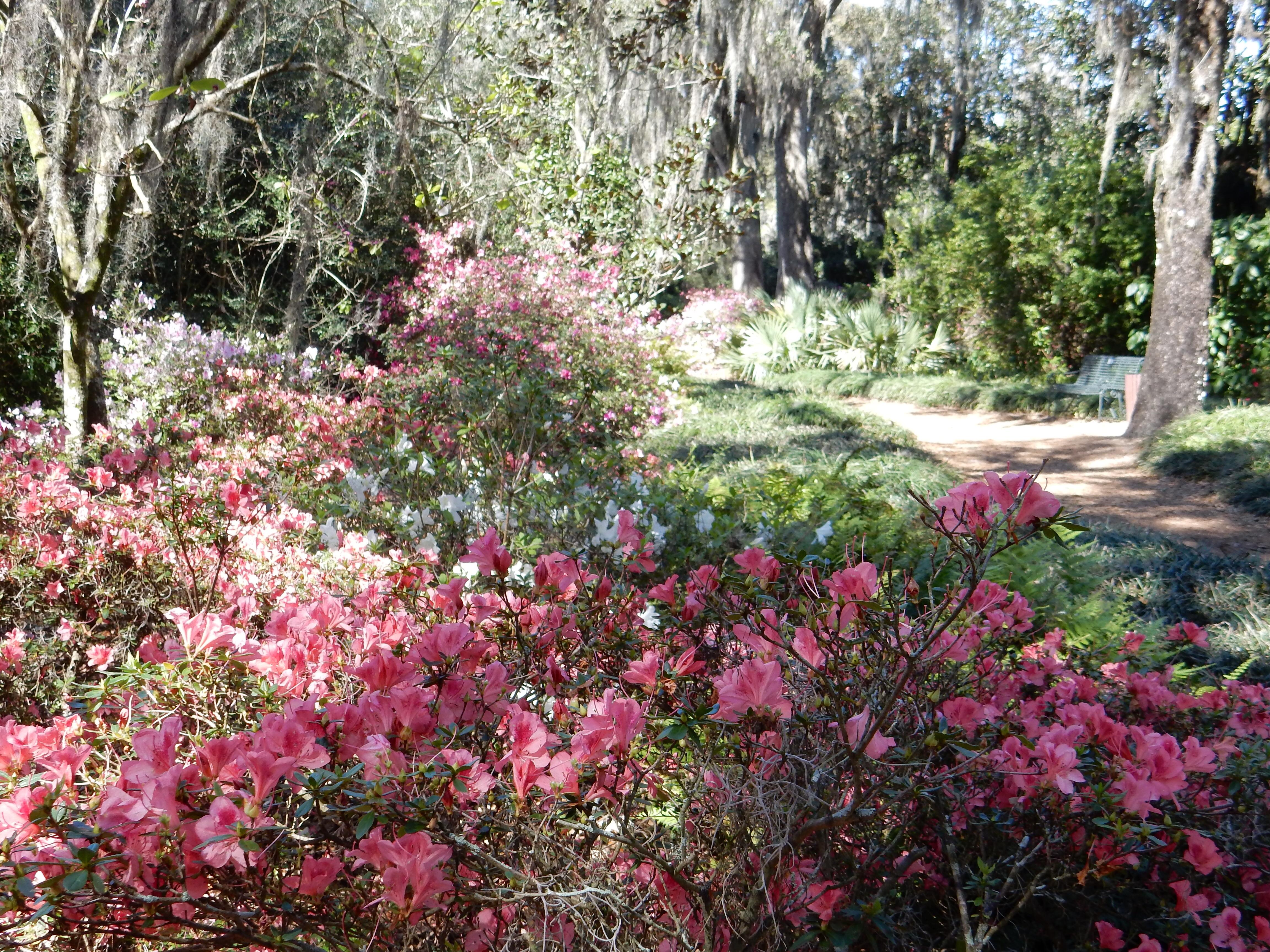 Bok Tower Gardens Lake Wales FL
