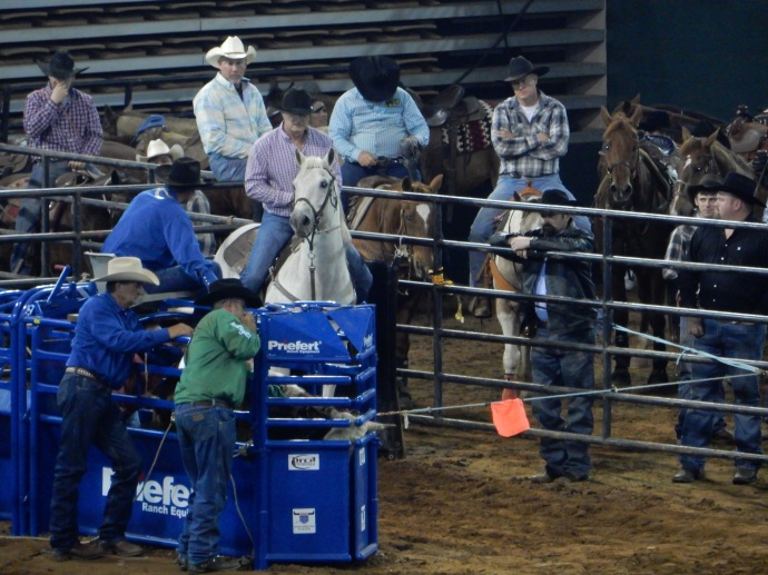 The 50+ rodeo participant