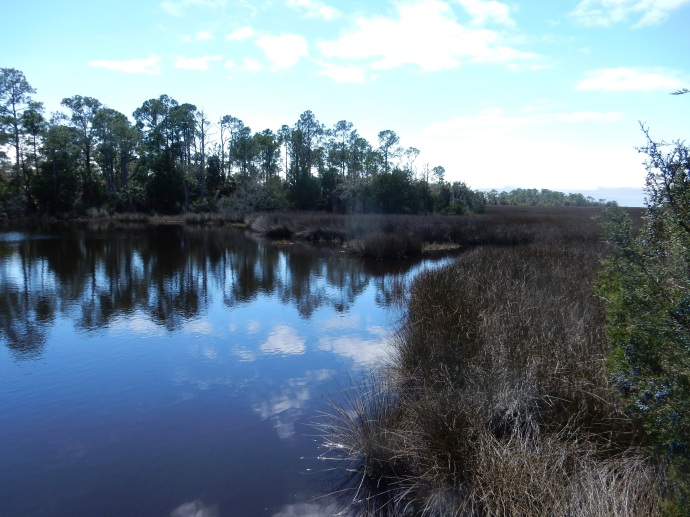 Lower Suwanee National Wildlife Refuge