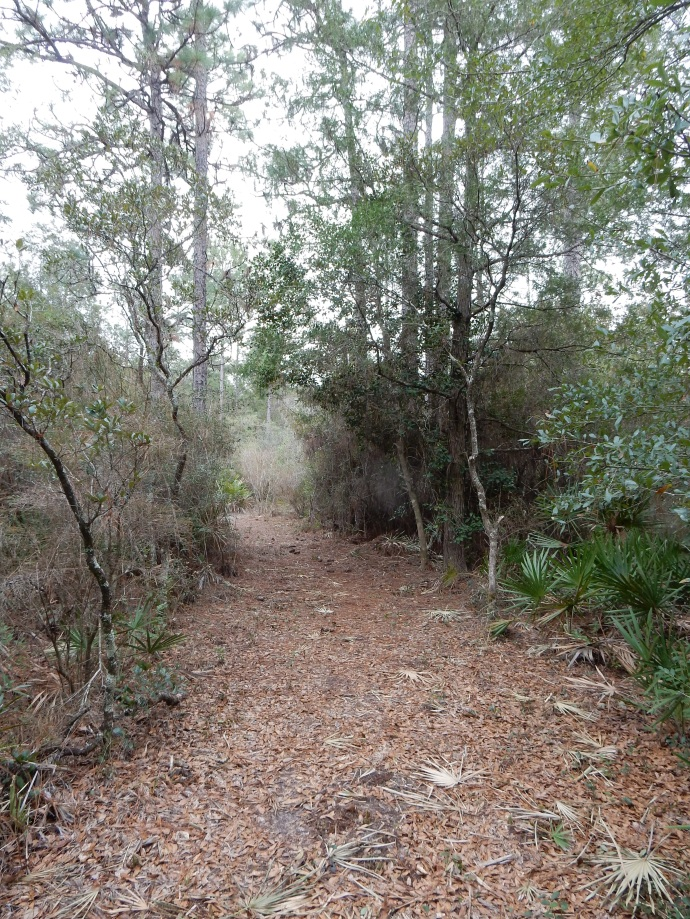 Nature trail at Adventures Unlimited