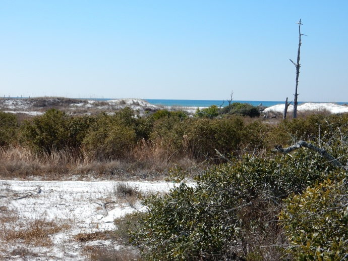 Dunes at Topsail