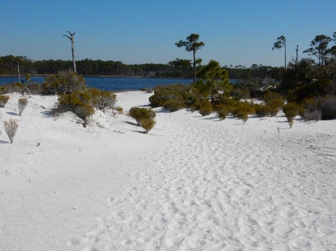 Morris Lake Trail