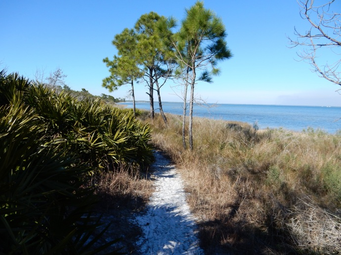 Walking in St Joseph Peninsula State Park