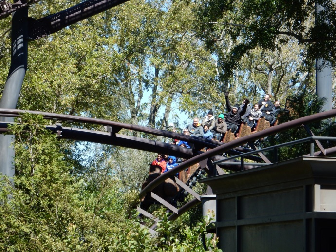 Flight of the Hippogriff ride