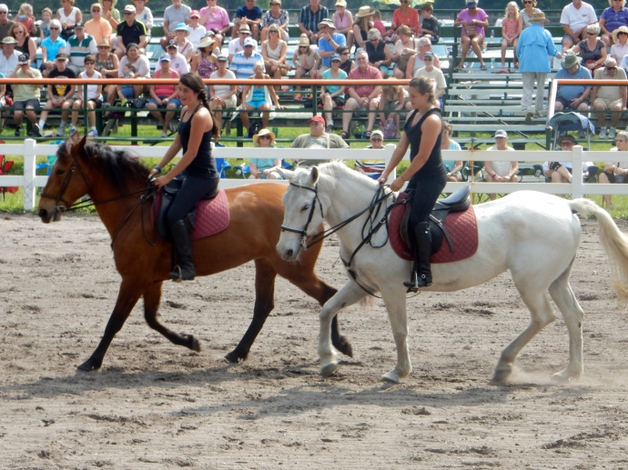 Two mares putting on a riding demonstration