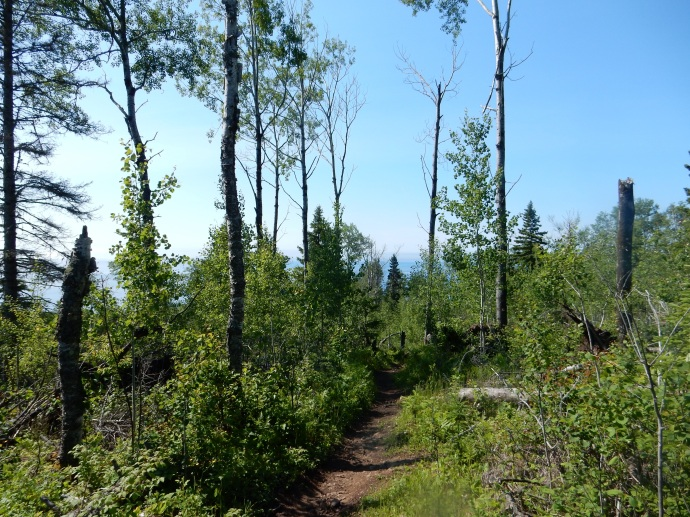 View of Lake Superior from the trail