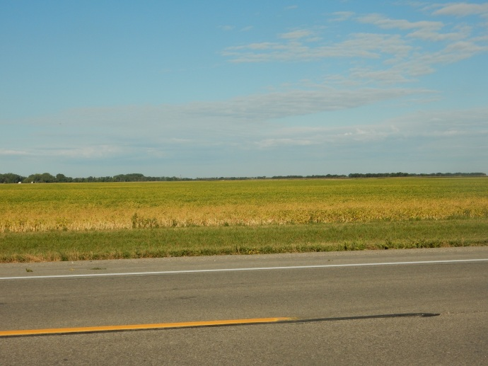 Flat agricultural land as far as you can see