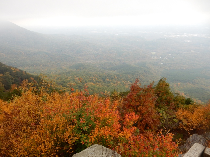 The view from Fort Mountain overlook