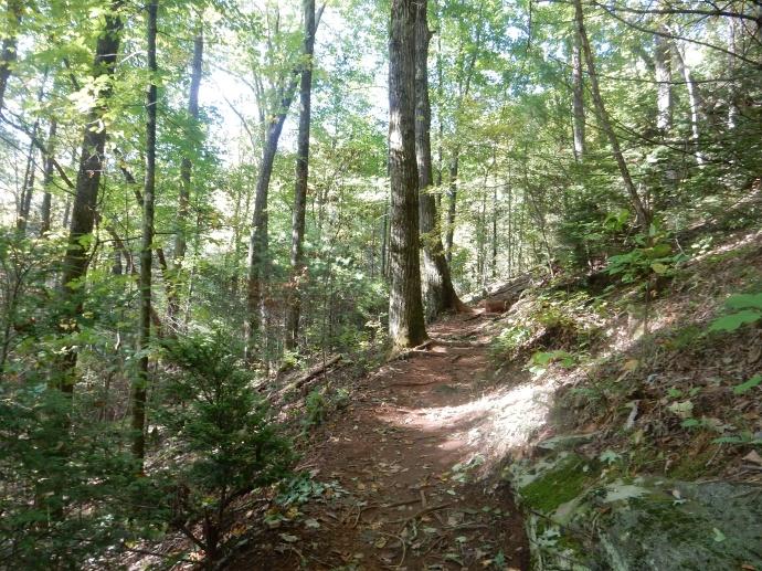 The trail to DeSoto Falls