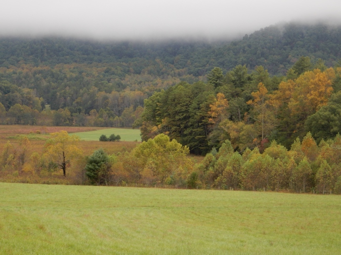 Part of Cades Cove area