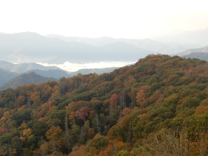 Last view as we leave Great Smoky Mountains behind