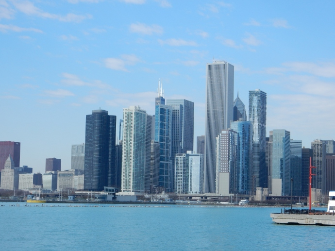 A portion of the Chicago skyline