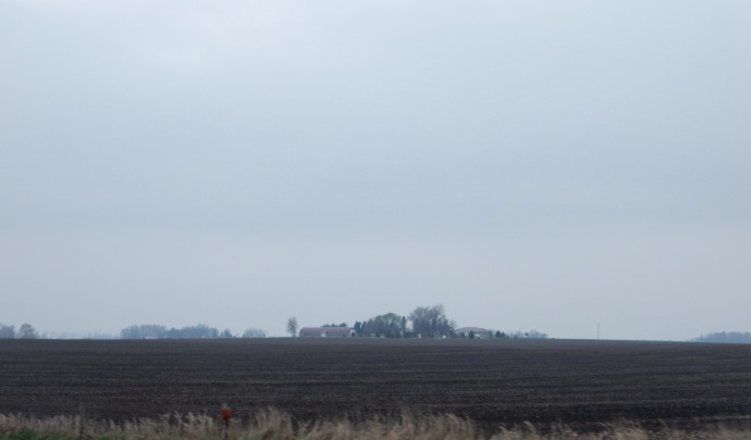 Minnesota Gold-farm land near Blue Earth MN