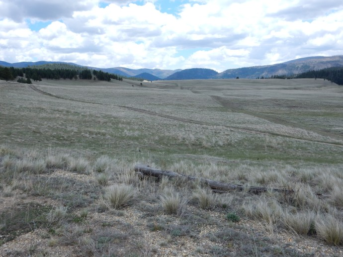 View from the back country of Valles Caldera