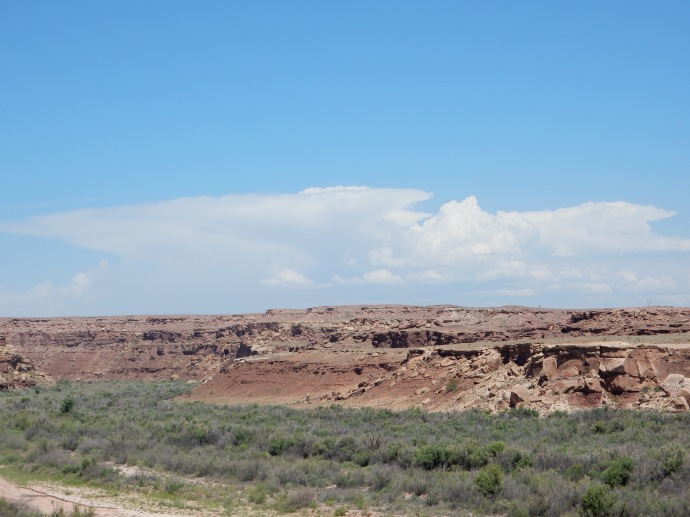 Along the drive from Flagstaff to Navajo National Monument