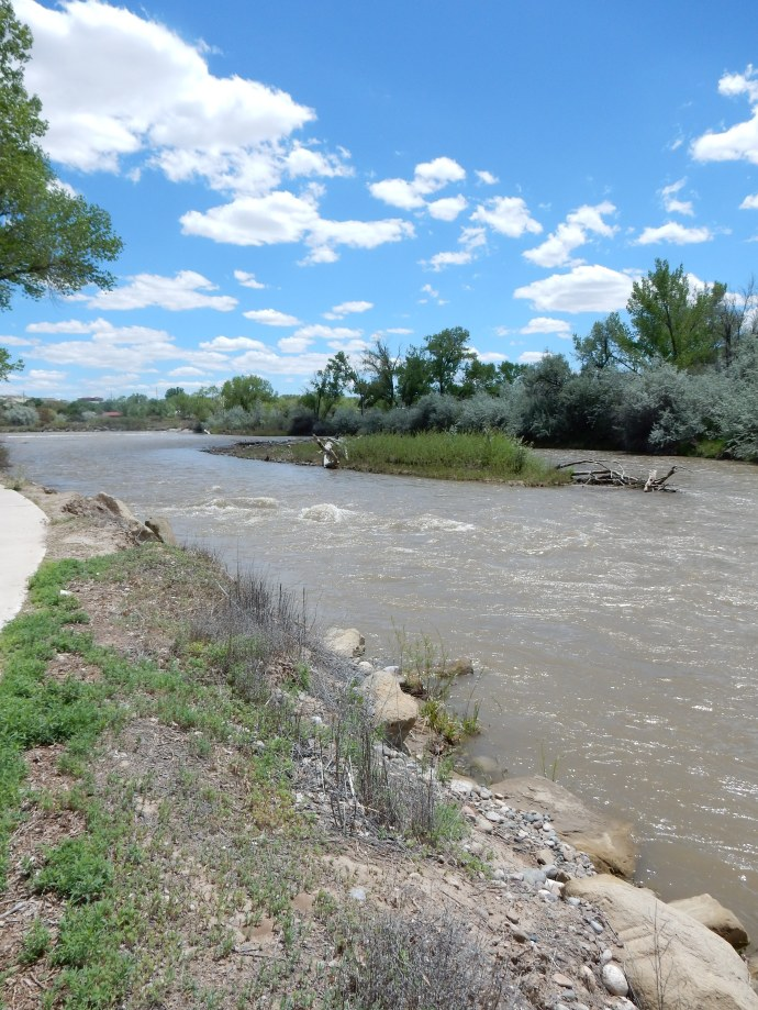 The Animas River in NM